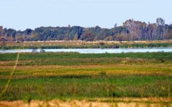 Crearán un Parque Nacional en la cuenca del Río Luján