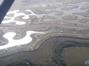 Humedales del río Luján: una mirada desde el aire