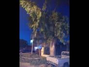 Un rayo rompió una rama y mató a una joven de 17 años en Avellaneda y José Ingenieros
