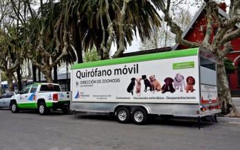 El Quirófano Móvil de Zoonosis estará en distintos puntos de Virreyes