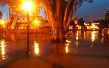 """""""El río Luján crece por el desarrollo urbano que destruye los humedales"""""""