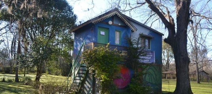 """""""Un espacio para la Biblioteca Genoveva"""", el pedido que se viralizó en las redes"""