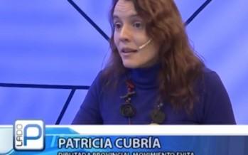 """Patricia Cubría: """"De Vido tendría que renunciar y ponerse a disposición de la Justicia"""""""