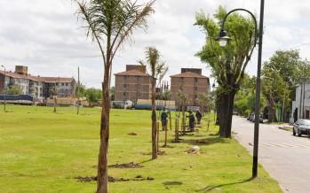 El Plan de Forestación llegó a San Rafael