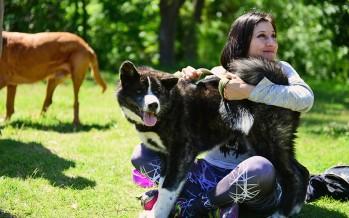 Día del Animal: Zoonosis hará un operativo especial en Infico