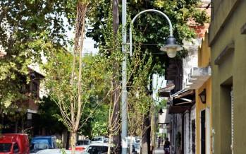 Avanza el Plan de Forestación en Victoria