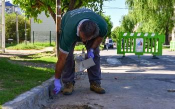 Control de plagas y obras cloacales en el barrio Mil Viviendas