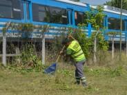 Trabajos de desmalezamiento en vías del Tren Mitre