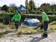 Comenzaron las tareas de mantenimiento del predio anexo a la Costanera Pública