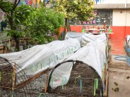 El Colegio Madre Rafaela avanza en el proyecto de la huerta natural orgánica