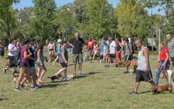 Nuevo taller de adiestramiento de perros en el Parque del Bicentenario