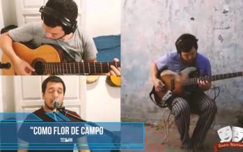 Recitales en cuarentena: músicos de nuestra ciudad brindan shows por Instagram y Facebook