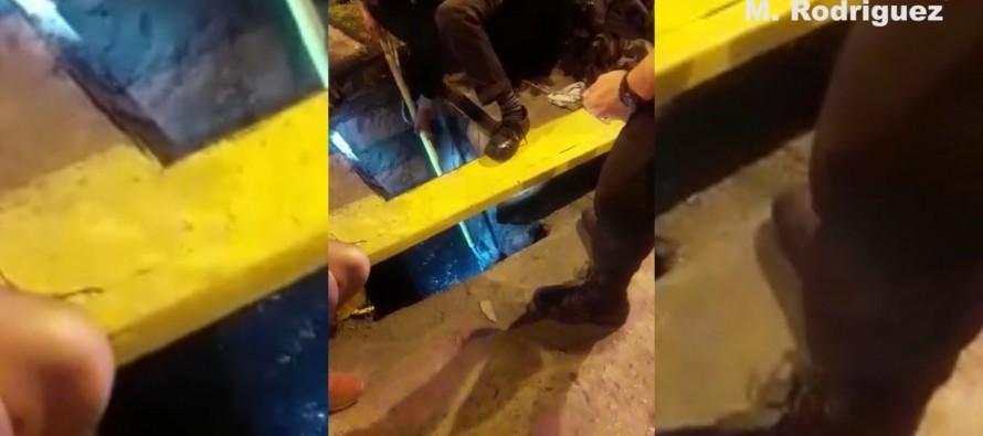Defensa Civil rescató a un perro ciego que quedó atrapado en una alcantarilla