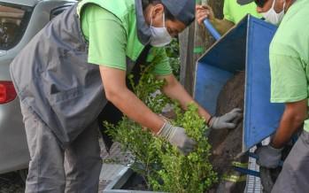 Tareas de equipamiento urbano y parquización sobre la Avenida Perón desde Uruguay hasta Quintana