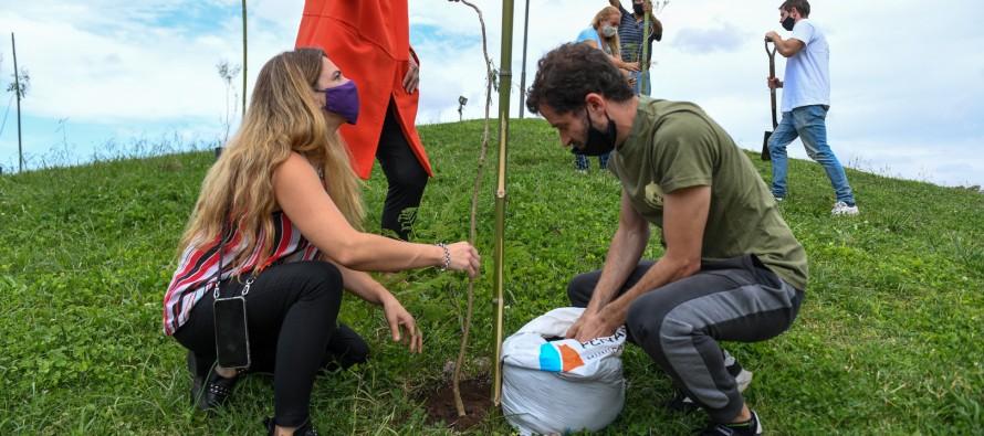 Plantaron 60 árboles nativos en el Parque del Bicentenario