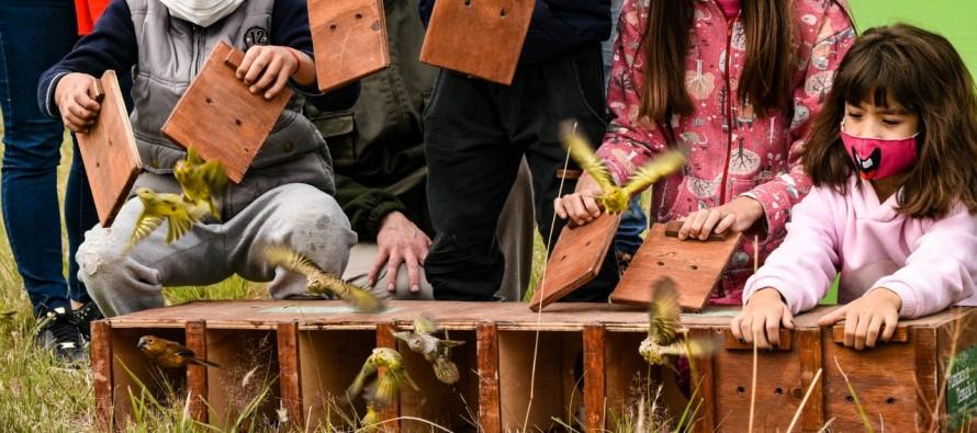 Liberaron en nuestro delta un centenar de aves que habían sido rescatadas