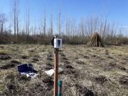Se instalaron sensores en el Delta para obtener información para la producción mimbrera